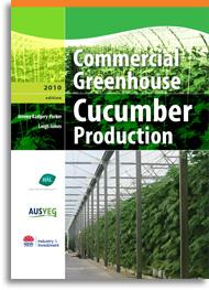cucumber production