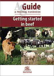 Cover of Beef AgGuide