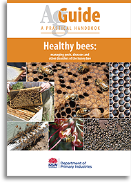 Healthy bees bookcover image