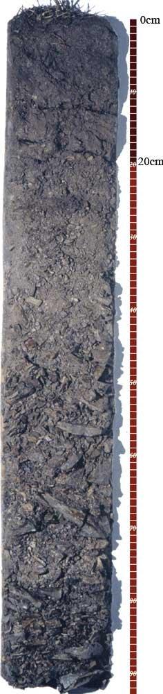 Soil-Profile-7