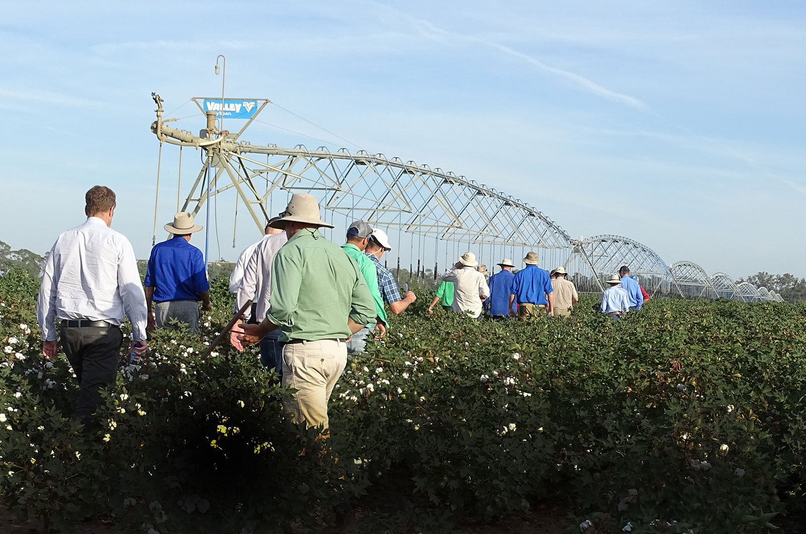 Image for Course Irrigation 101