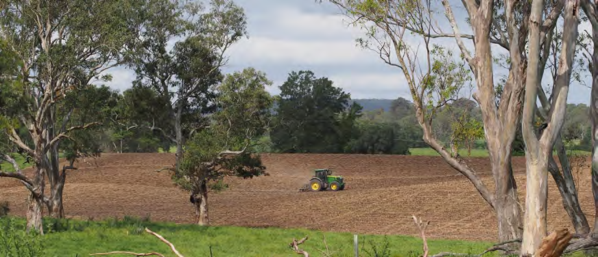 Tocal soil with surrounding landscape