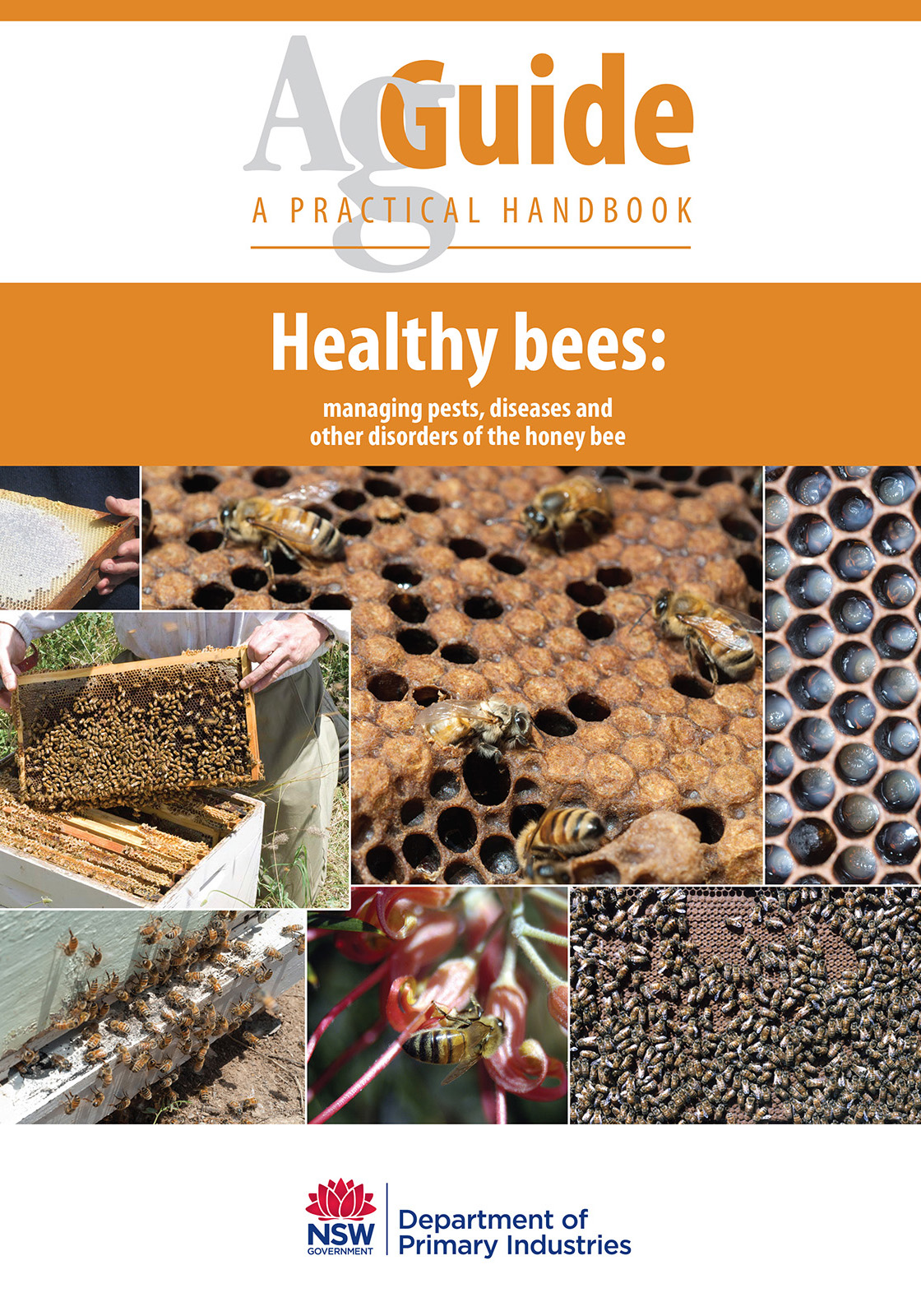 Image for Publication Healthy Bees - AgGuide