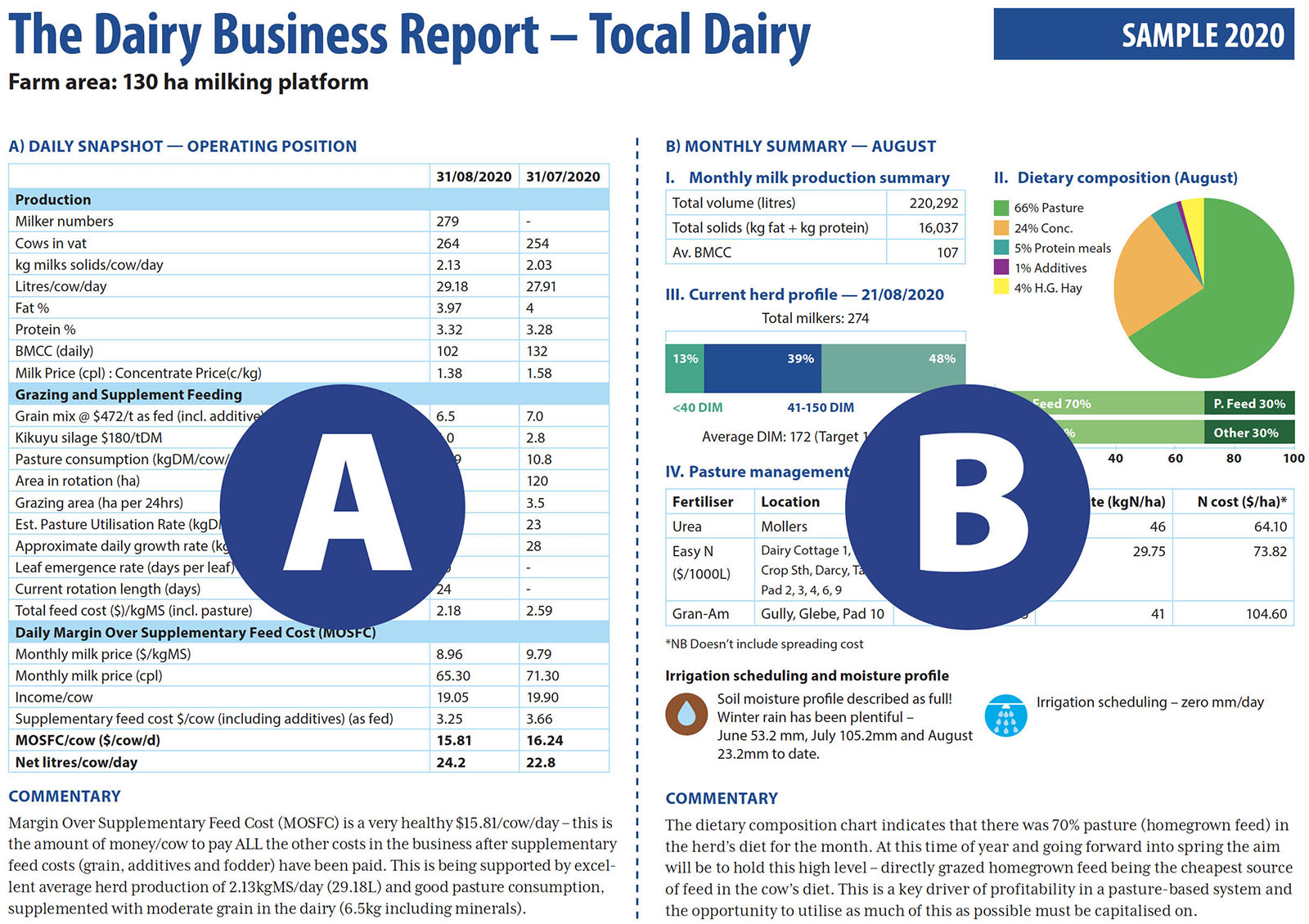 Example of Dairy Business Report