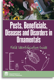 pests beneficials in ornamentals